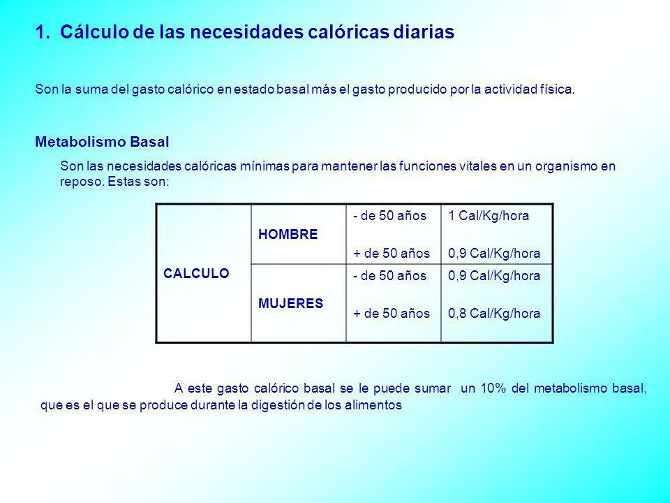 1.Cálculo de las necesidades calóricas diarias Son la suma del gasto calórico en estado basal más el gasto producido por la actividad física. Metaboli