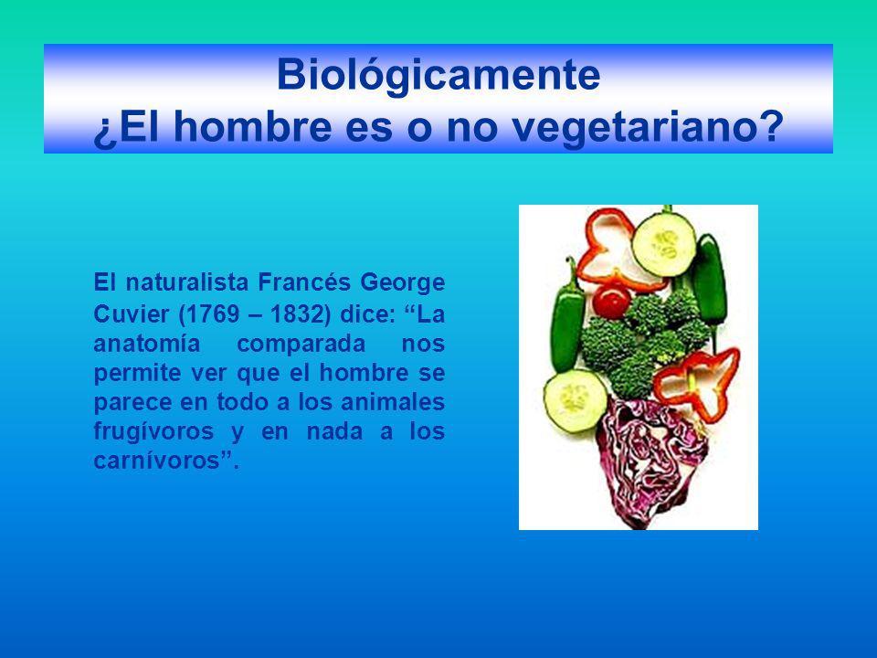 Biológicamente ¿El hombre es o no vegetariano? El naturalista Francés George Cuvier (1769 – 1832) dice: La anatomía comparada nos permite ver que el h