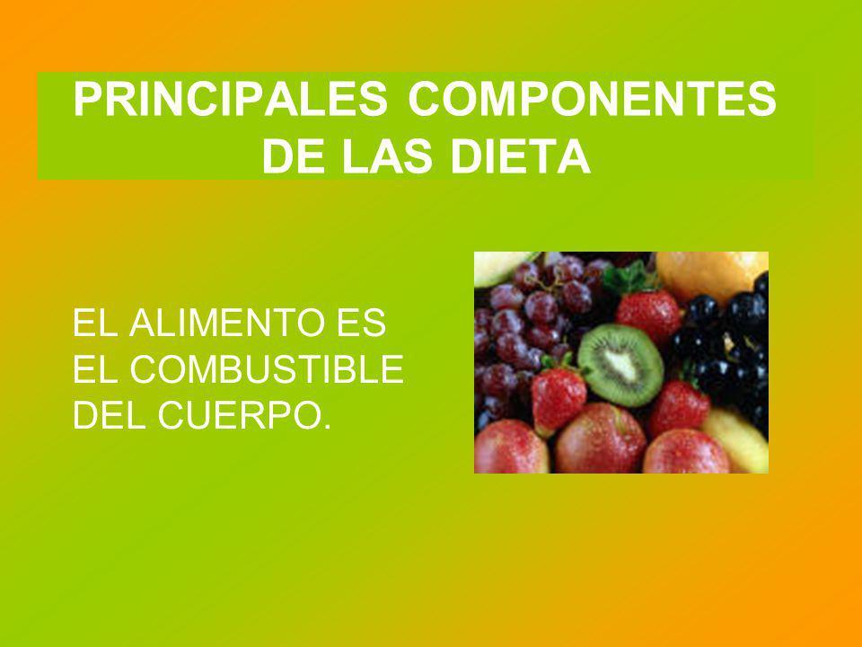 PRINCIPALES COMPONENTES DE LAS DIETA EL ALIMENTO ES EL COMBUSTIBLE DEL CUERPO.