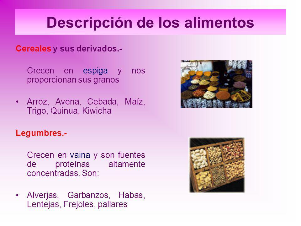 Descripción de los alimentos Cereales y sus derivados.- Crecen en espiga y nos proporcionan sus granos Arroz, Avena, Cebada, Maíz, Trigo, Quinua, Kiwi