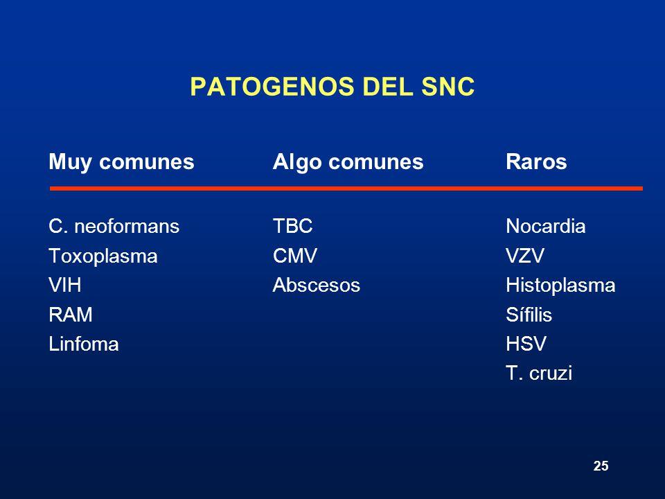 25 PATOGENOS DEL SNC Muy comunesAlgo comunesRaros C. neoformansTBCNocardia ToxoplasmaCMVVZV VIHAbscesosHistoplasma RAMSífilis LinfomaHSV T. cruzi