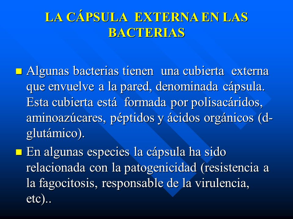 LA CÁPSULA EXTERNA EN LAS BACTERIAS Algunas bacterias tienen una cubierta externa que envuelve a la pared, denominada cápsula. Esta cubierta está form