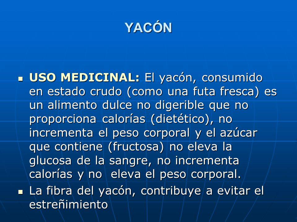 YACÓN USO MEDICINAL: El yacón, consumido en estado crudo (como una futa fresca) es un alimento dulce no digerible que no proporciona calorías (dietéti
