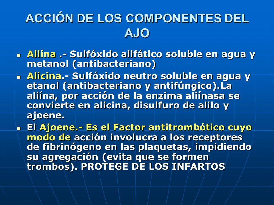 ACCIÓN DE LOS COMPONENTES DEL AJO Aliína.- Sulfóxido alifático soluble en agua y metanol (antibacteriano) Aliína.- Sulfóxido alifático soluble en agua