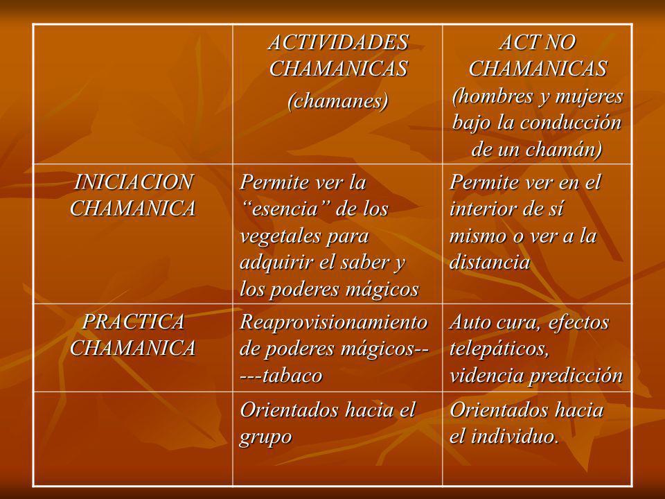 ACTIVIDADES CHAMANICAS (chamanes) ACT NO CHAMANICAS (hombres y mujeres bajo la conducción de un chamán) INICIACION CHAMANICA Permite ver la esencia de