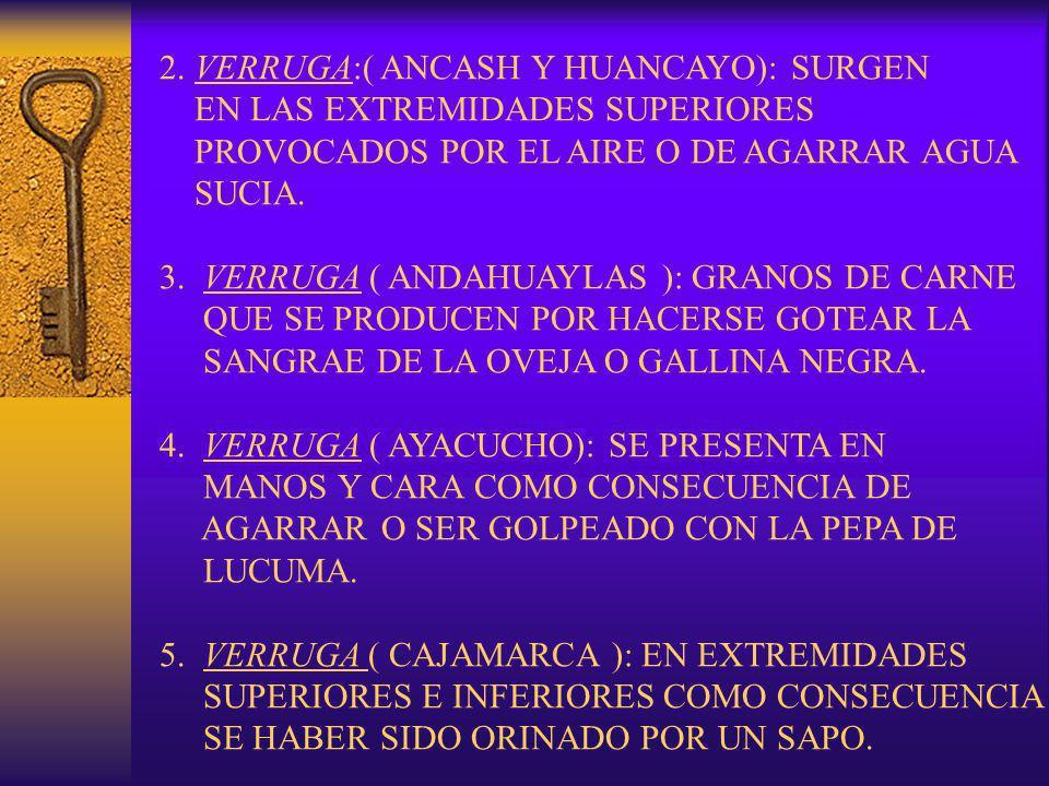 2. VERRUGA:( ANCASH Y HUANCAYO): SURGEN EN LAS EXTREMIDADES SUPERIORES PROVOCADOS POR EL AIRE O DE AGARRAR AGUA SUCIA. 3. VERRUGA ( ANDAHUAYLAS ): GRA