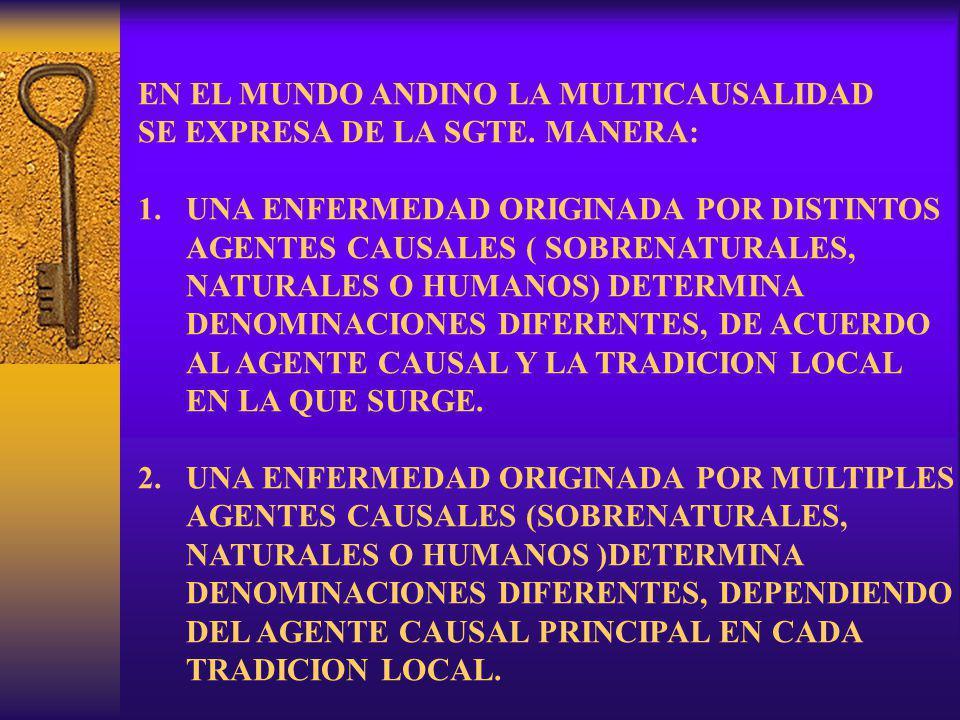 3.UNA ENFERMEDAD ORIGINADA POR UN MISMO CAUSAL ( SOBRE.