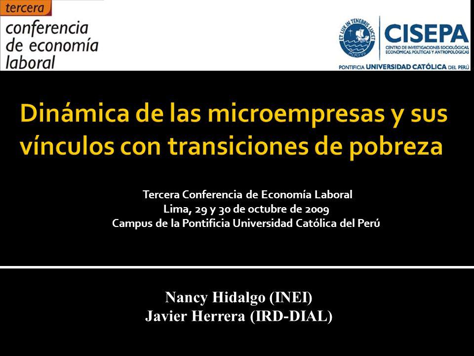 Nancy Hidalgo (INEI) Javier Herrera (IRD-DIAL) Tercera Conferencia de Economía Laboral Lima, 29 y 30 de octubre de 2009 Campus de la Pontificia Universidad Católica del Perú