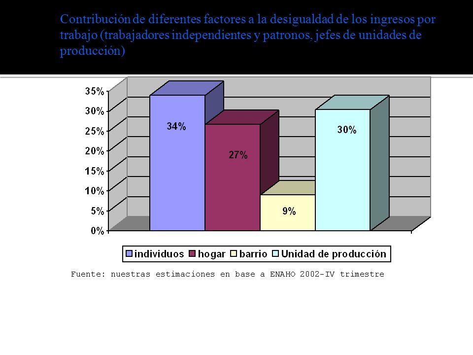Contribución de diferentes factores a la desigualdad de los ingresos por trabajo (trabajadores independientes y patronos, jefes de unidades de producción)