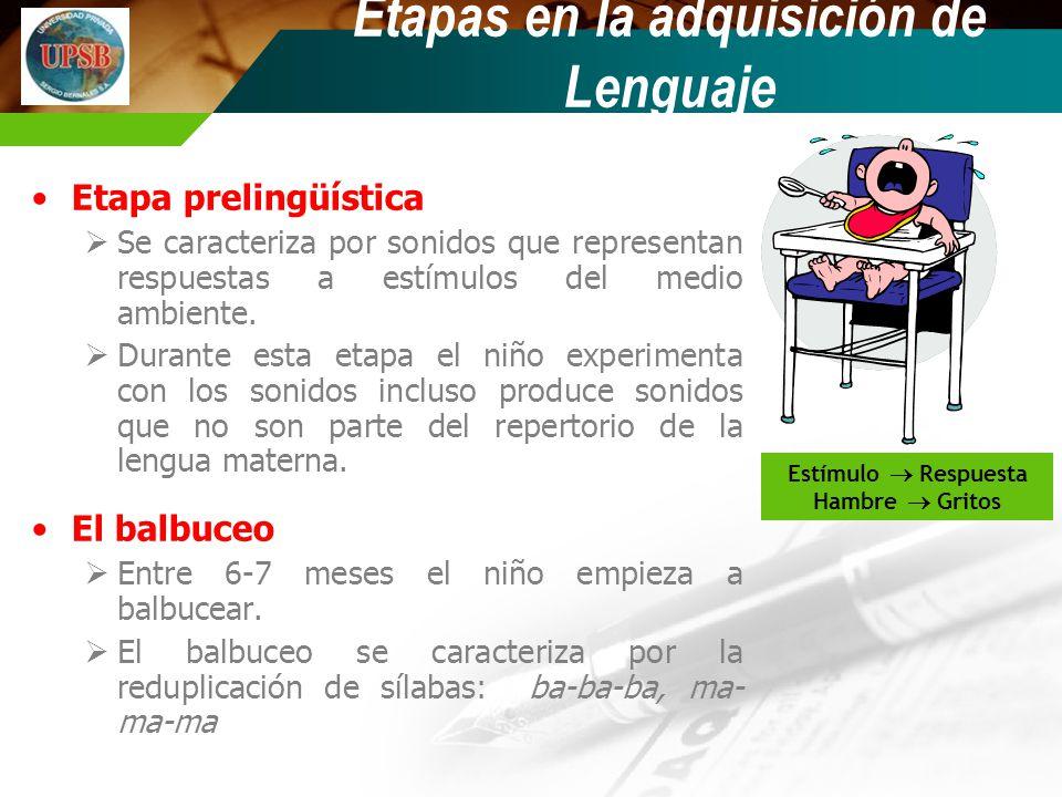Etapas en la adquisición de Lenguaje Etapa prelingüística Se caracteriza por sonidos que representan respuestas a estímulos del medio ambiente. Durant