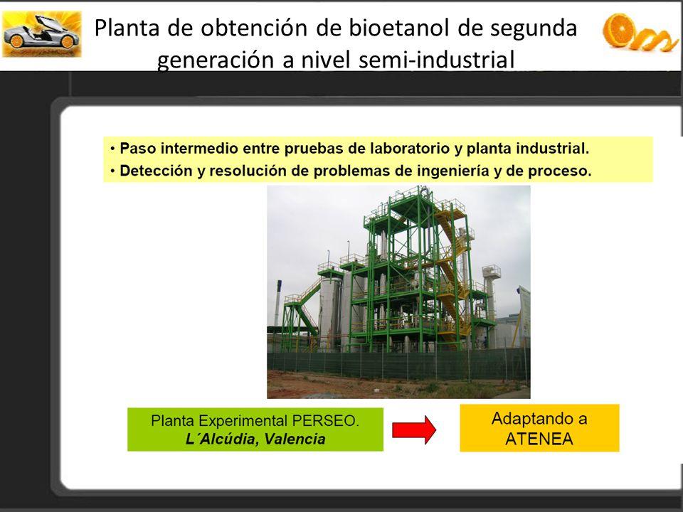 Planta de obtención de bioetanol de segunda generación a nivel semi-industrial