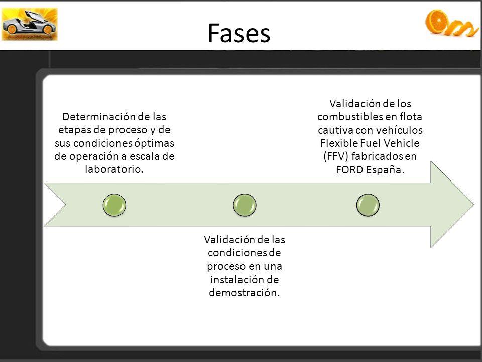 Fases Determinación de las etapas de proceso y de sus condiciones óptimas de operación a escala de laboratorio. Validación de las condiciones de proce