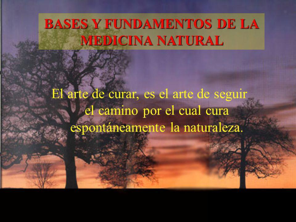 El arte de curar, es el arte de seguir el camino por el cual cura espontáneamente la naturaleza. BASES Y FUNDAMENTOS DE LA MEDICINA NATURAL