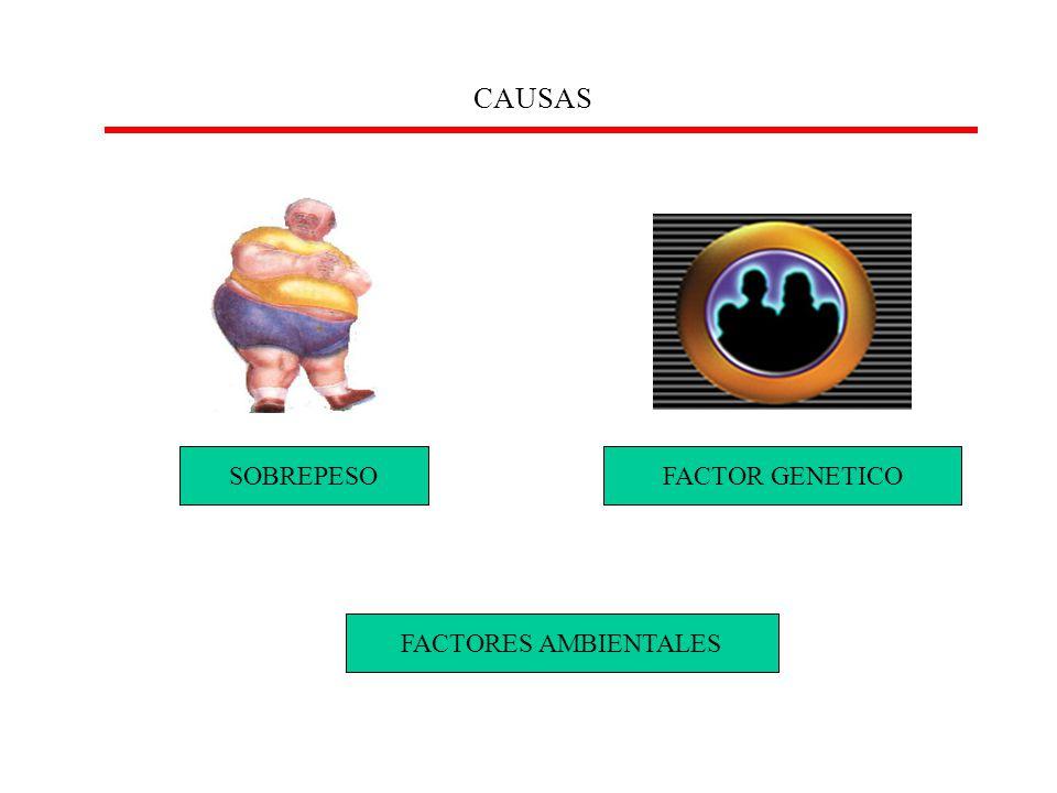 CAUSAS Son muchos los que confunden estos dos términos, Son muchos los que confunden estos dos términos, SOBREPESOFACTOR GENETICO FACTORES AMBIENTALES