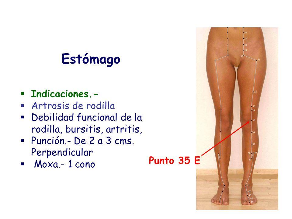 Indicaciones.- Artrosis de rodilla Debilidad funcional de la rodilla, bursitis, artritis, Punción.- De 2 a 3 cms. Perpendicular Moxa.- 1 cono Estómago