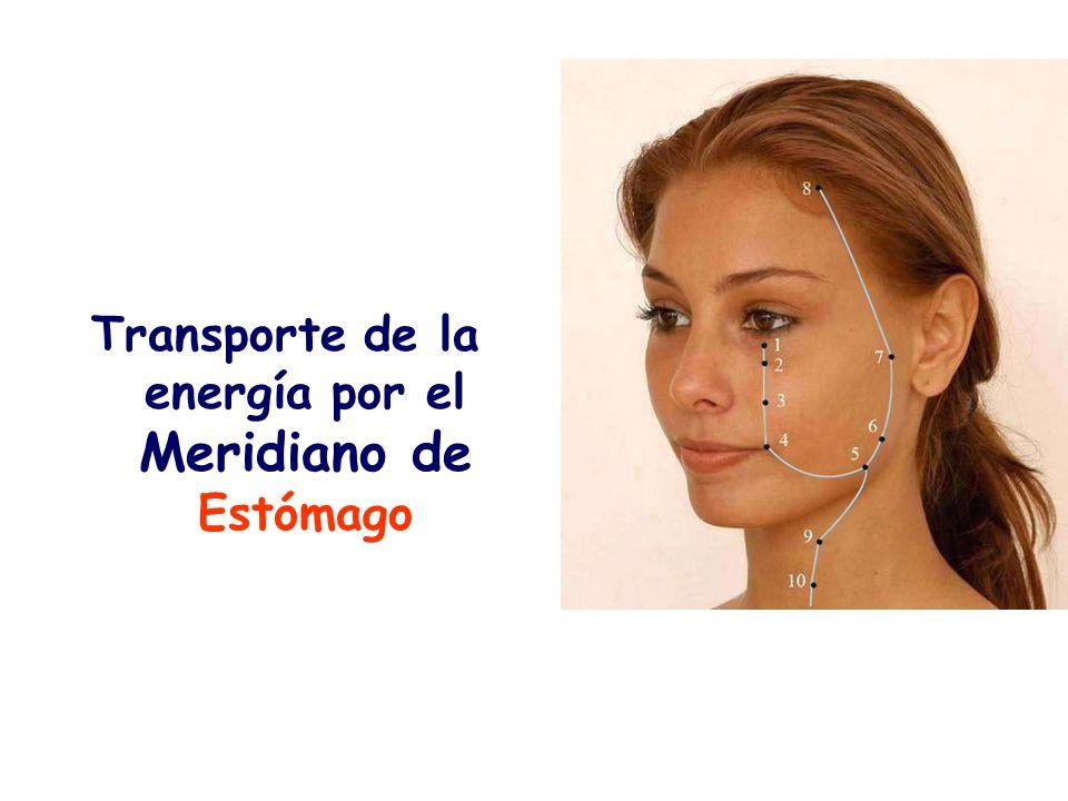 Indicaciones.- Trastornos de la energía, hipertensión, hipotensión Dolor e inflamación de la garganta, asma, hipo Punción.- 5 mm.