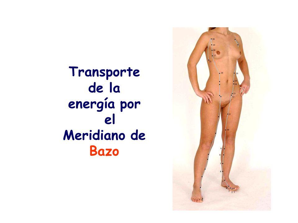 Transporte de la energía por el Meridiano de Bazo