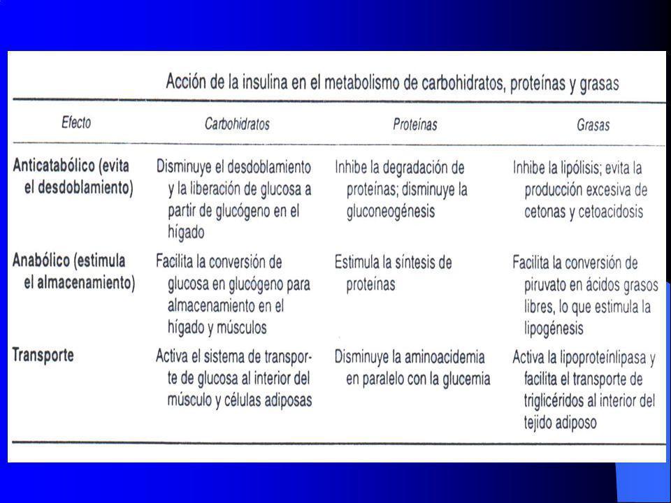 UN PIONERO DE LA INVESTIGACION El Dr.