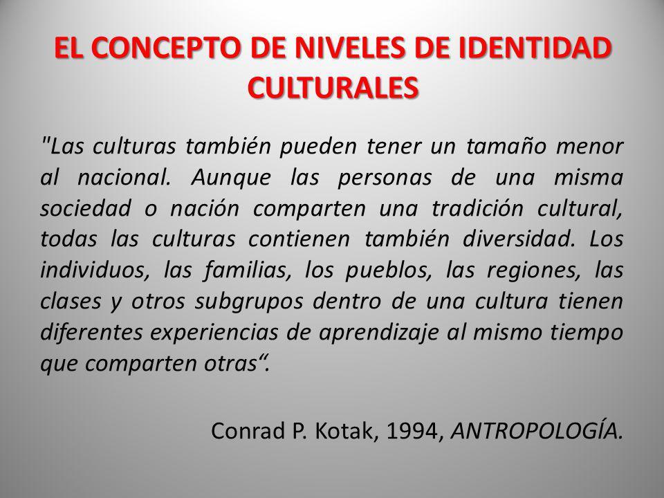 Las culturas también pueden tener un tamaño menor al nacional.
