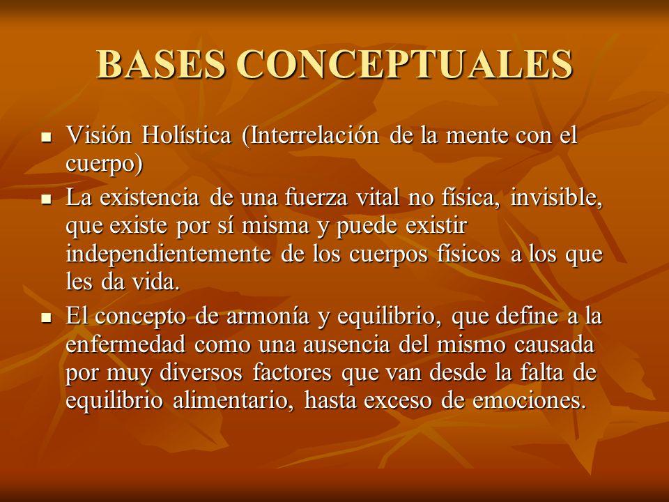 BASES CONCEPTUALES Visión Holística (Interrelación de la mente con el cuerpo) Visión Holística (Interrelación de la mente con el cuerpo) La existencia de una fuerza vital no física, invisible, que existe por sí misma y puede existir independientemente de los cuerpos físicos a los que les da vida.