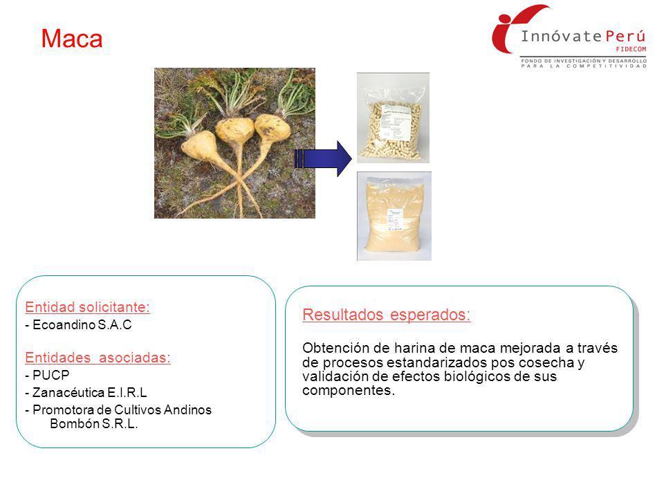 Resultados esperados: Obtención de harina de maca mejorada a través de procesos estandarizados pos cosecha y validación de efectos biológicos de sus c
