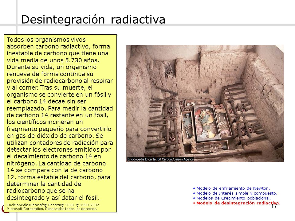 Matemática Básica(Ing.)17 Desintegración radiactiva Todos los organismos vivos absorben carbono radiactivo, forma inestable de carbono que tiene una v