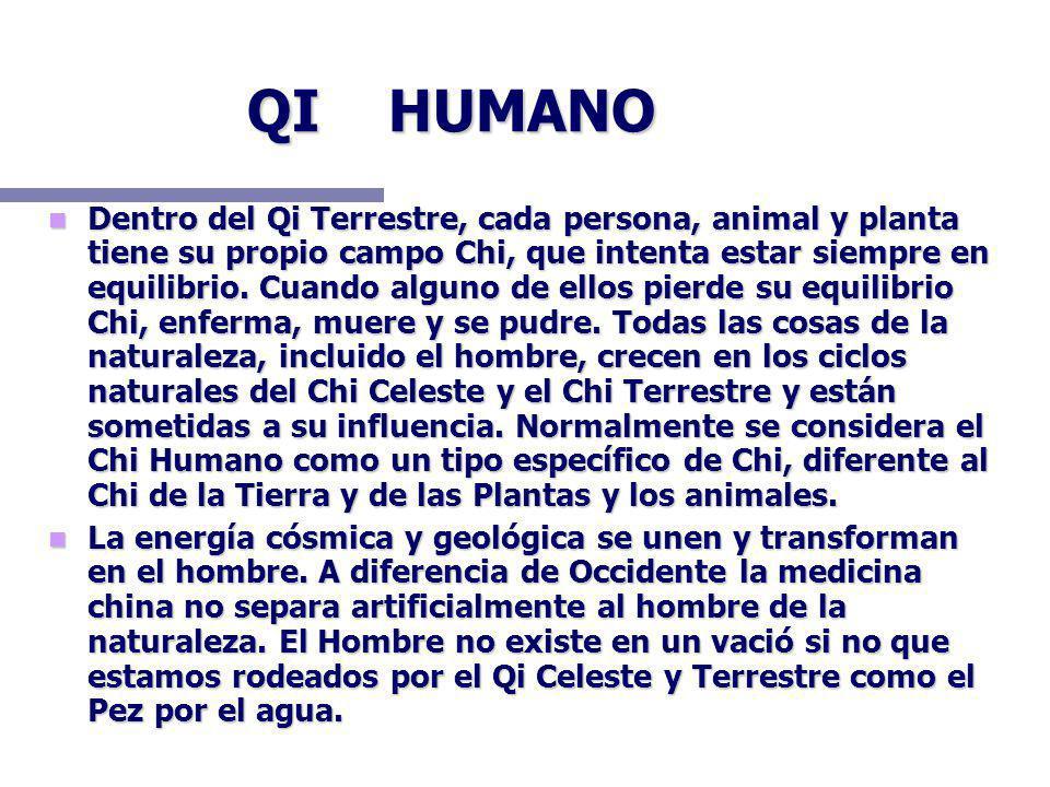 QI HUMANO Dentro del Qi Terrestre, cada persona, animal y planta tiene su propio campo Chi, que intenta estar siempre en equilibrio. Cuando alguno de