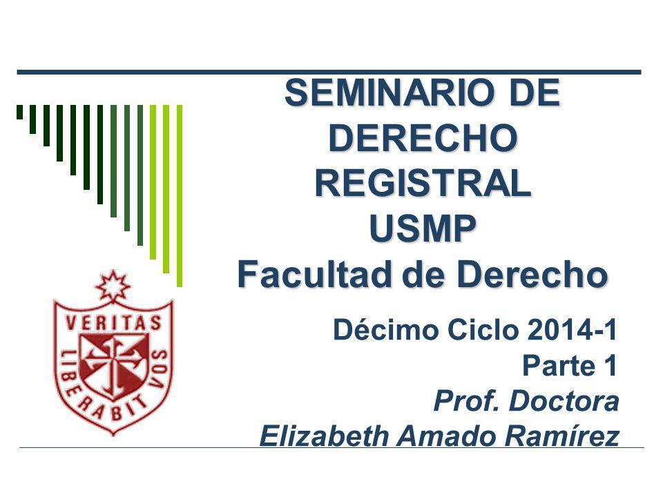SEMINARIO DE DERECHO REGISTRAL USMP Facultad de Derecho Décimo Ciclo 2014-1 Parte 1 Prof. Doctora Elizabeth Amado Ramírez