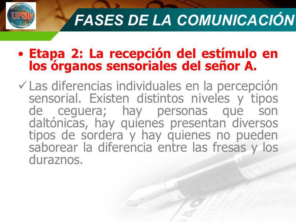 Etapa 2: La recepción del estímulo en los órganos sensoriales del señor A. Las diferencias individuales en la percepción sensorial. Existen distintos