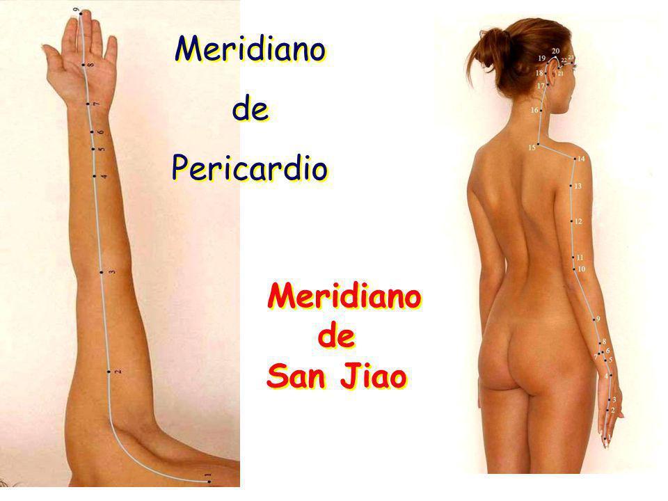 Meridiano de Pericardio Meridiano de Pericardio Meridiano de San Jiao Meridiano de San Jiao