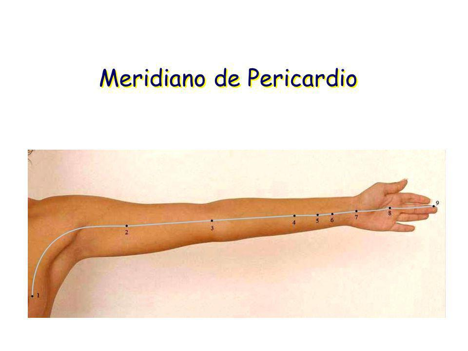 Meridiano de Pericardio