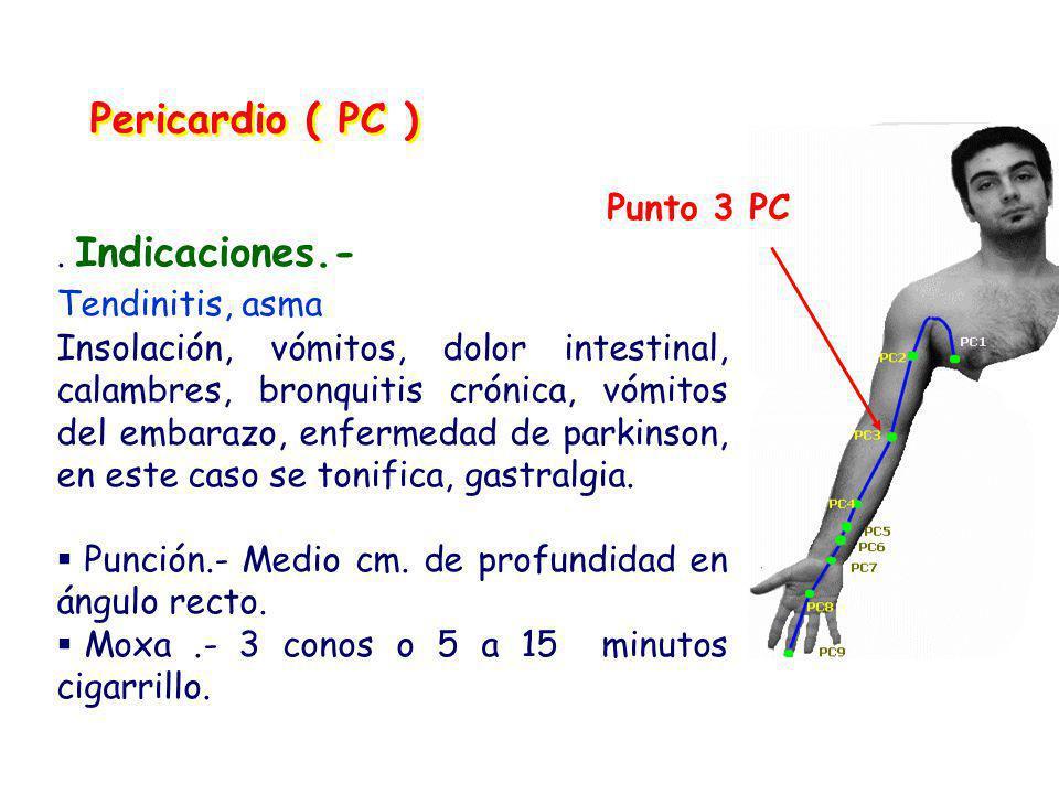 Pericardio ( PC ).