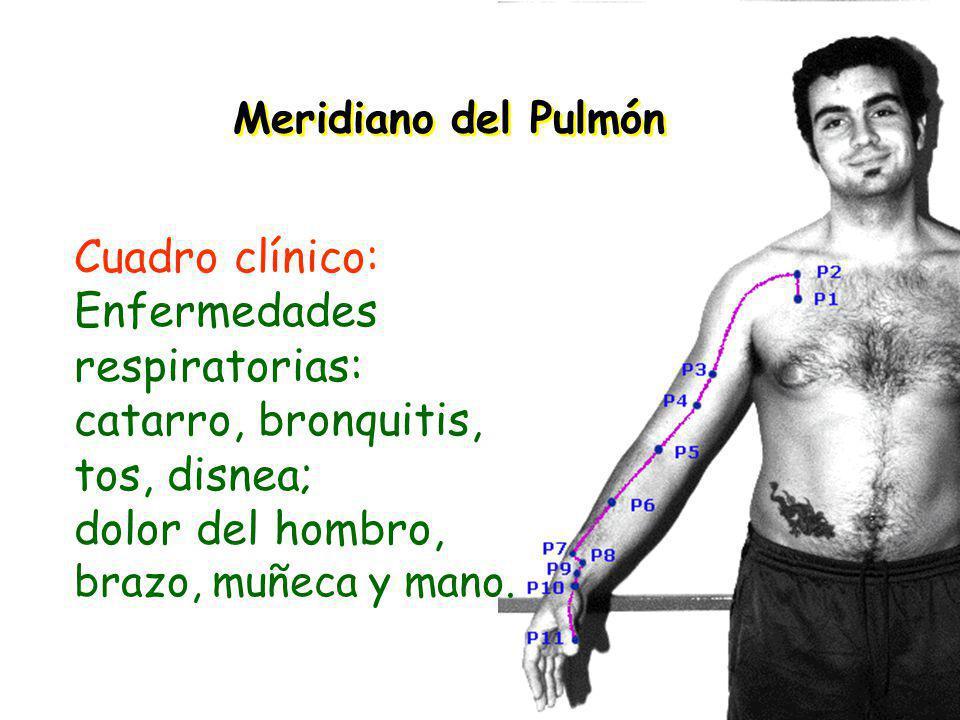 Meridiano del Pulmón Cuadro clínico: Enfermedades respiratorias: catarro, bronquitis, tos, disnea; dolor del hombro, brazo, muñeca y mano.