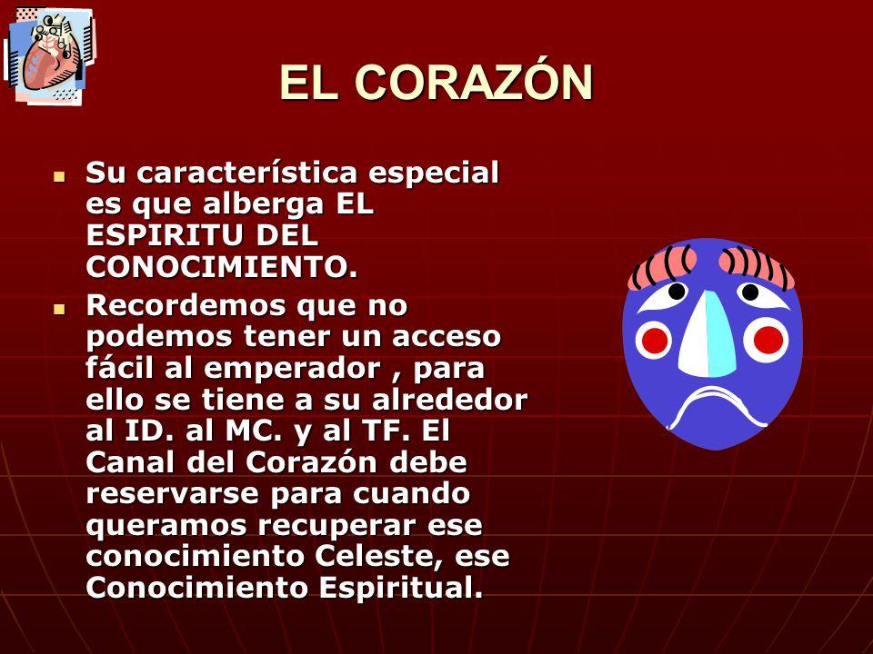 EL CORAZÓN Su característica especial es que alberga EL ESPIRITU DEL CONOCIMIENTO. Su característica especial es que alberga EL ESPIRITU DEL CONOCIMIE