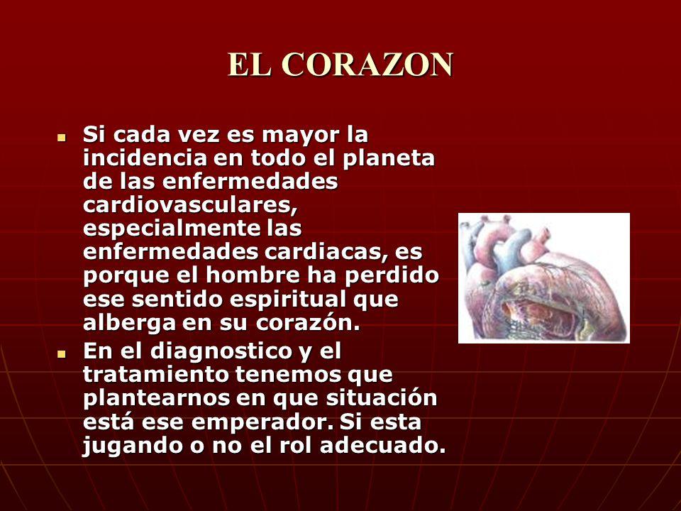 EL CANAL DEL CORAZÓN Recibe la influencia Celeste y recibe el psiquismo de los demás órganos, aparte del psíquismo propio del corazón y entremezcladas, las almacena, la filtra, y la expande para que se conserve en el cerebro.