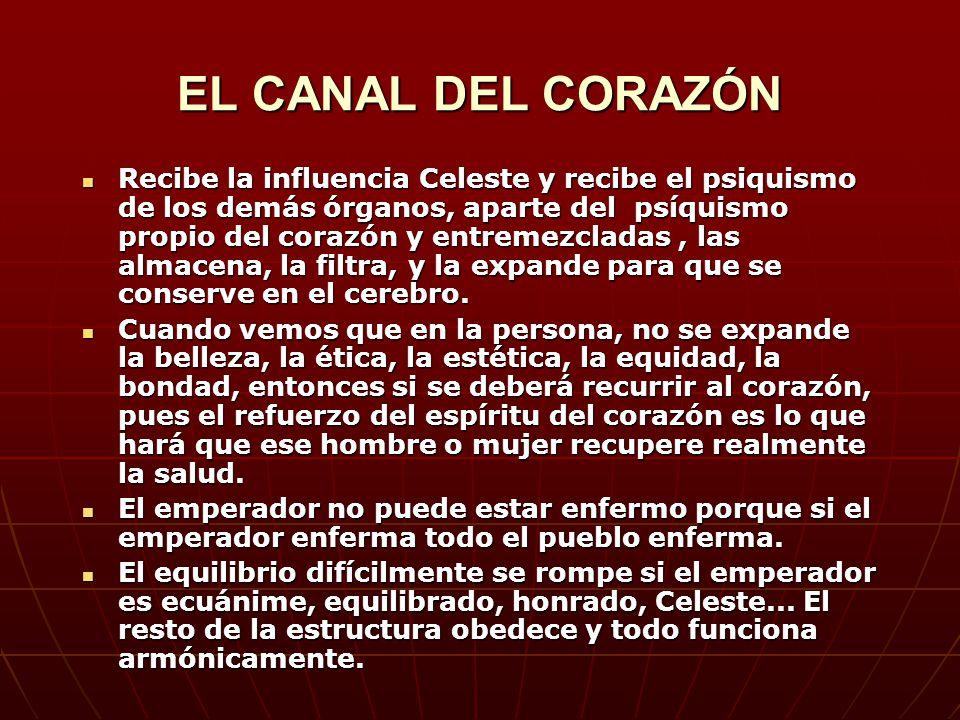 EL CANAL DEL CORAZÓN Recibe la influencia Celeste y recibe el psiquismo de los demás órganos, aparte del psíquismo propio del corazón y entremezcladas