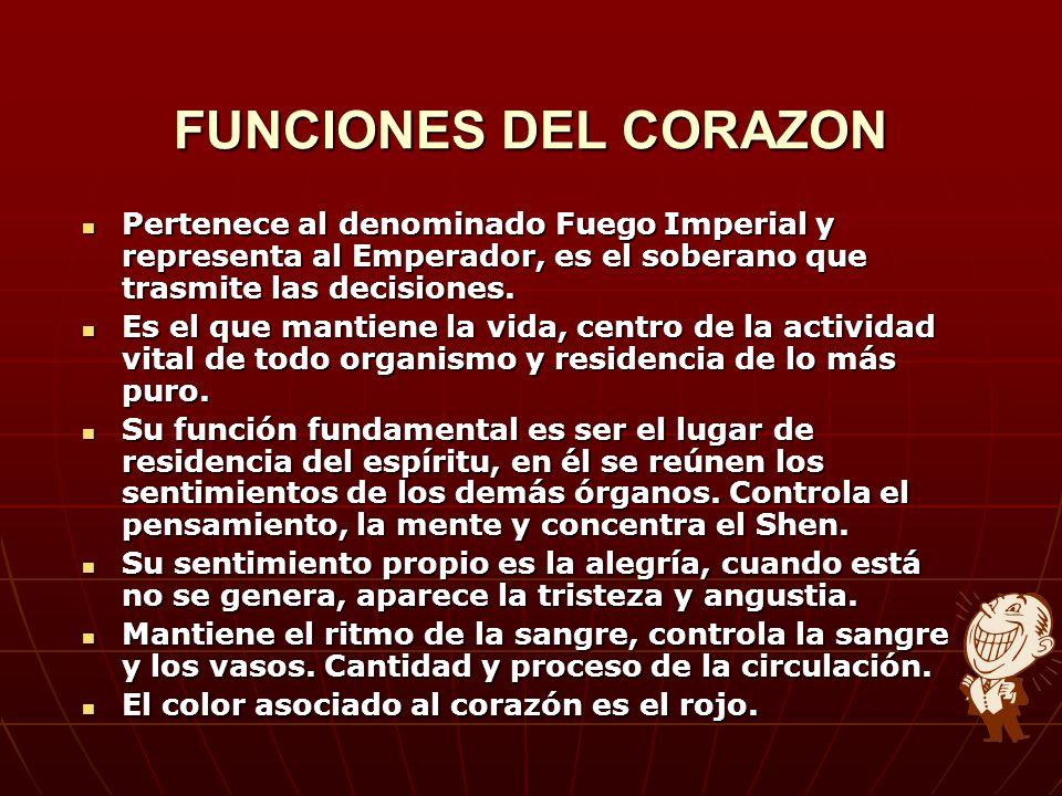 FUNCIONES DEL CORAZON Pertenece al denominado Fuego Imperial y representa al Emperador, es el soberano que trasmite las decisiones. Pertenece al denom