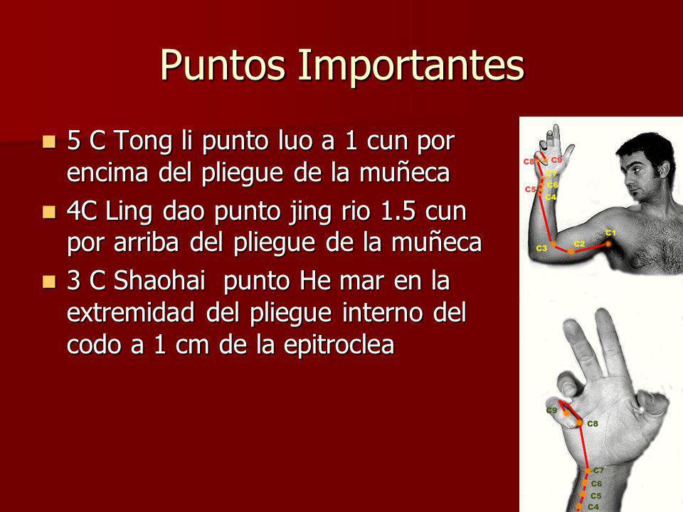 4 Puntos principales 9 C: Shaochong punto jing pozo angulo radial del meñique corresponde al elemento madera 9 C: Shaochong punto jing pozo angulo radial del meñique corresponde al elemento madera 8C: Shaofu punto yin manantial en la palma de la mano entre el 4to y 5to metacarpaiano donde indica la punta del meñique al cerrar la mano 8C: Shaofu punto yin manantial en la palma de la mano entre el 4to y 5to metacarpaiano donde indica la punta del meñique al cerrar la mano 7 C :Shenmen punto shu arroyo y yuan fuente en el pliegue de flexion de la muñeca sobre el pisciforme y la art radial punto fuente y punto sedante 7 C :Shenmen punto shu arroyo y yuan fuente en el pliegue de flexion de la muñeca sobre el pisciforme y la art radial punto fuente y punto sedante