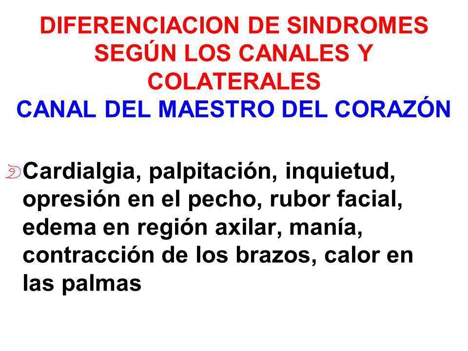 DIFERENCIACION DE SINDROMES SEGÚN LOS CANALES Y COLATERALES CANAL DEL MAESTRO DEL CORAZÓN Cardialgia, palpitación, inquietud, opresión en el pecho, ru