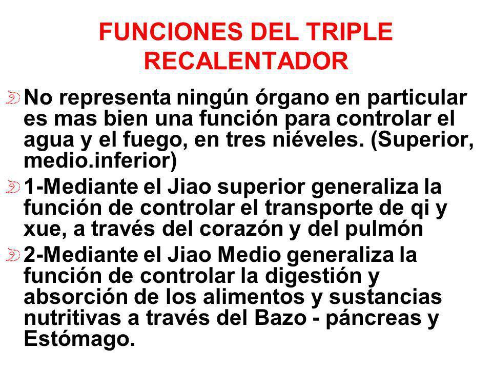 FUNCIONES DEL TRIPLE RECALENTADOR No representa ningún órgano en particular es mas bien una función para controlar el agua y el fuego, en tres niévele