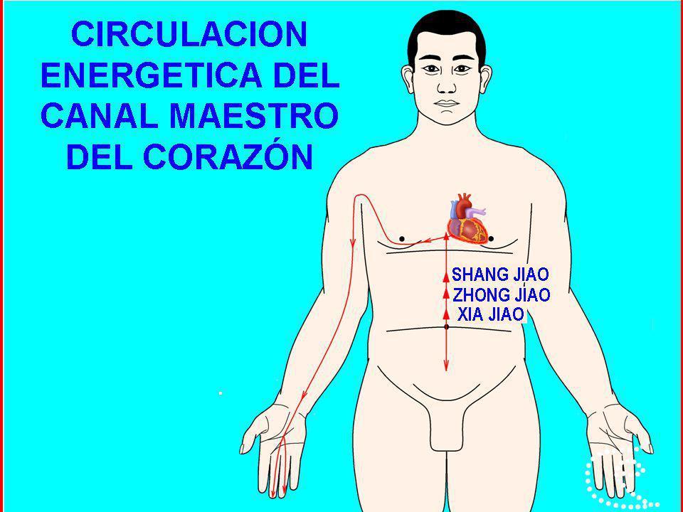 APLICACIÓN TERAPEUTICA DE LOS RESONADORES COMANDO DEL MAESTRO DEL CORAZÓN TONIFICACIÓN 9 MC (ZHONGCHONG).