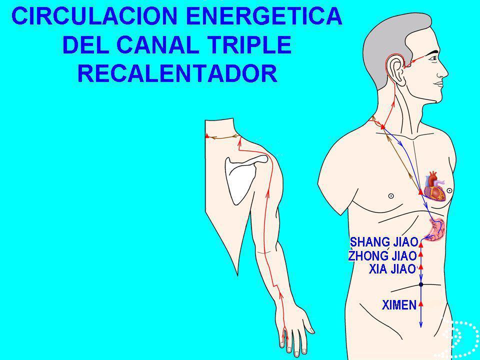 APLICACIÓN TERAPEUTICA DE LOS RESONADORES COMANDO DEL MAESTRO DEL CORAZÓN PASAJE 6 MC (NEI GUAN).