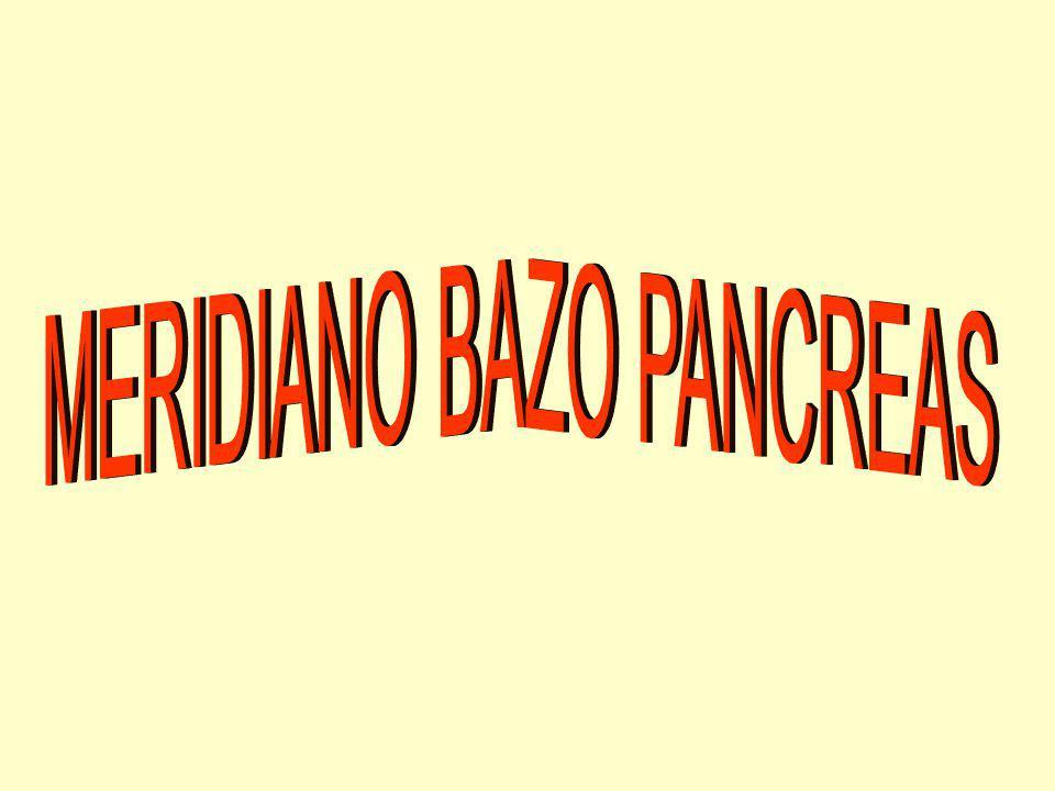 EL MERIDIANO DEL BAZO EMPIEZA EN EL ÁNGULO INTERNO DE LA BASE DE LA UÑA DEL DEDO GORDO DEL PIE, CIRCULA POR LA CARA MEDIAL DE LA PIERNA, POR LA CADERA, EL ABDOMEN Y EL TÓRAX, ENTRE LA LINEA AXILAR Y EL PEZÓN, PARA TERMINAR SU RECORRIDO EXTERNO EN EL SEGUNDO ESPACIO INTERCOSTAL.