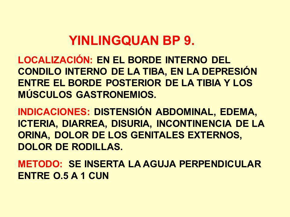 YINLINGQUAN BP 9. LOCALIZACIÓN: EN EL BORDE INTERNO DEL CONDILO INTERNO DE LA TIBA, EN LA DEPRESIÓN ENTRE EL BORDE POSTERIOR DE LA TIBIA Y LOS MÚSCULO