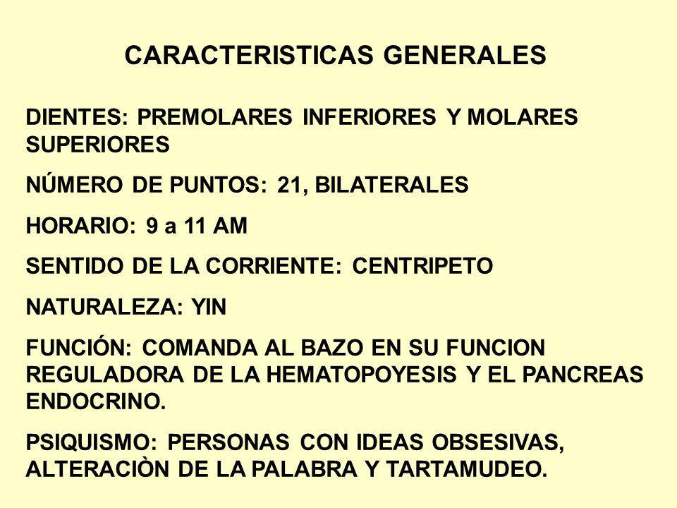 DIENTES: PREMOLARES INFERIORES Y MOLARES SUPERIORES NÚMERO DE PUNTOS: 21, BILATERALES HORARIO: 9 a 11 AM SENTIDO DE LA CORRIENTE: CENTRIPETO NATURALEZ