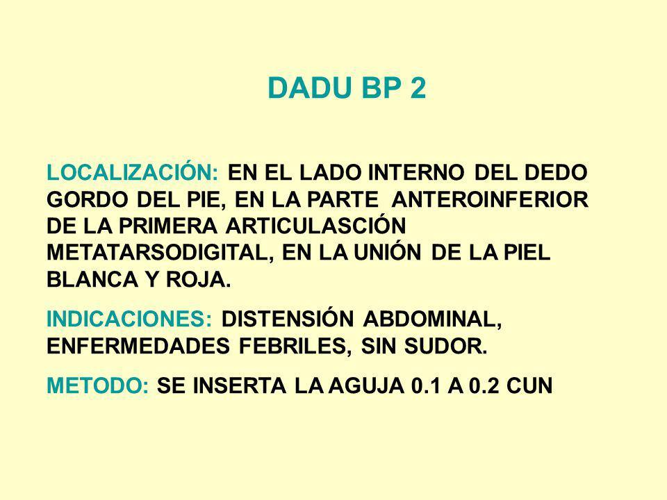 DADU BP 2 LOCALIZACIÓN: EN EL LADO INTERNO DEL DEDO GORDO DEL PIE, EN LA PARTE ANTEROINFERIOR DE LA PRIMERA ARTICULASCIÓN METATARSODIGITAL, EN LA UNIÓ