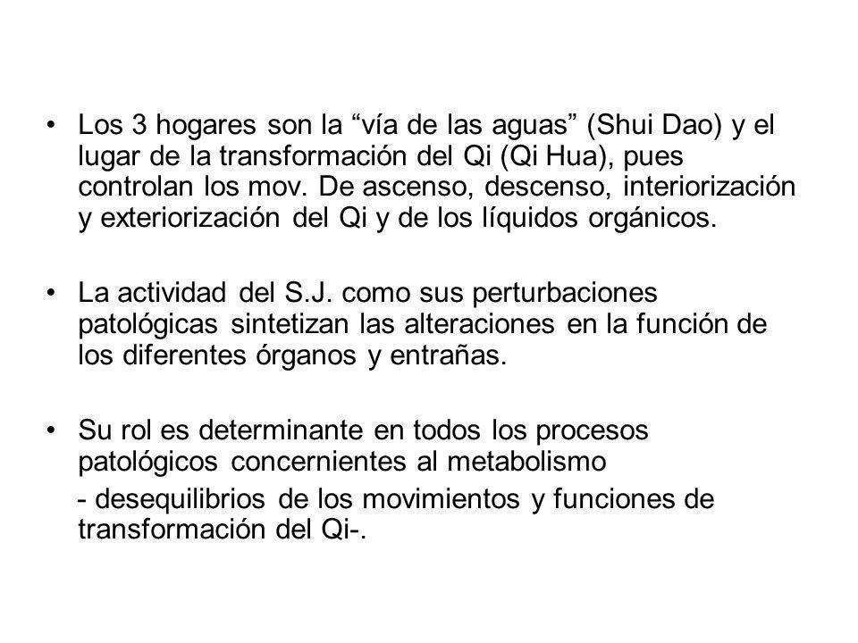 Los 3 hogares son la vía de las aguas (Shui Dao) y el lugar de la transformación del Qi (Qi Hua), pues controlan los mov. De ascenso, descenso, interi