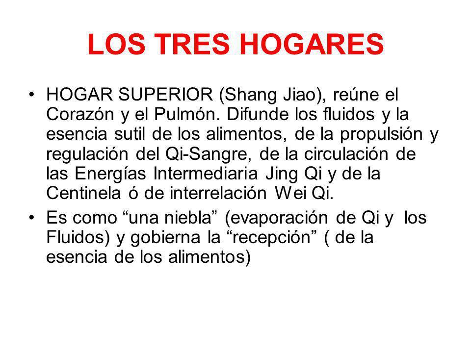 LOS TRES HOGARES HOGAR SUPERIOR (Shang Jiao), reúne el Corazón y el Pulmón. Difunde los fluidos y la esencia sutil de los alimentos, de la propulsión