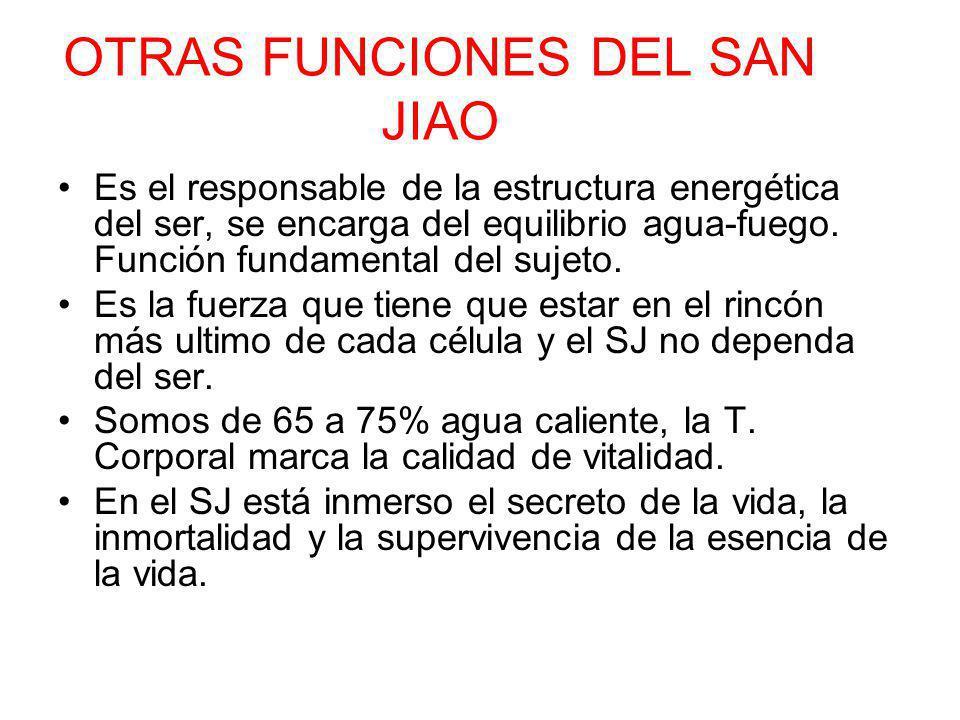 OTRAS FUNCIONES DEL SAN JIAO Es el responsable de la estructura energética del ser, se encarga del equilibrio agua-fuego. Función fundamental del suje