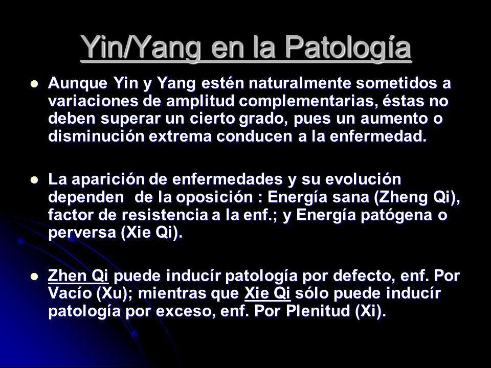 Yin/Yang en la Patología Aunque Yin y Yang estén naturalmente sometidos a variaciones de amplitud complementarias, éstas no deben superar un cierto gr